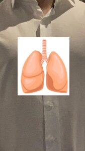 Thijs with Lungs